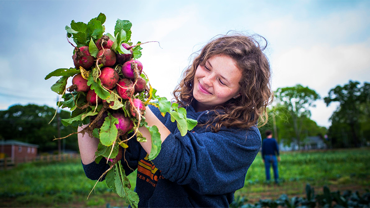 A student admires radishes grown on Oxford's Organic Farm.